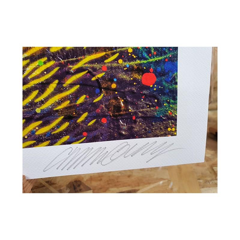 C215 - Rainbow Cat - Numéroté et signé