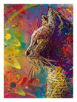 C215 - Rainbow Cat - 60 x 80 cm