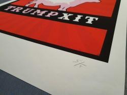 S/F - Trumpxit 50 x 70 cm - Numérotée et signée - Timed edition