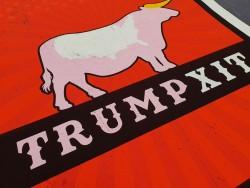 S/F - Trumpxit 50 x 70 cm